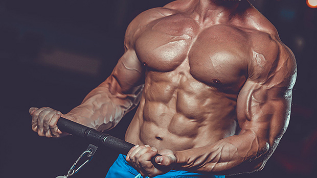 Muscle Nutritional